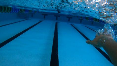 Sports In 60: Swim
